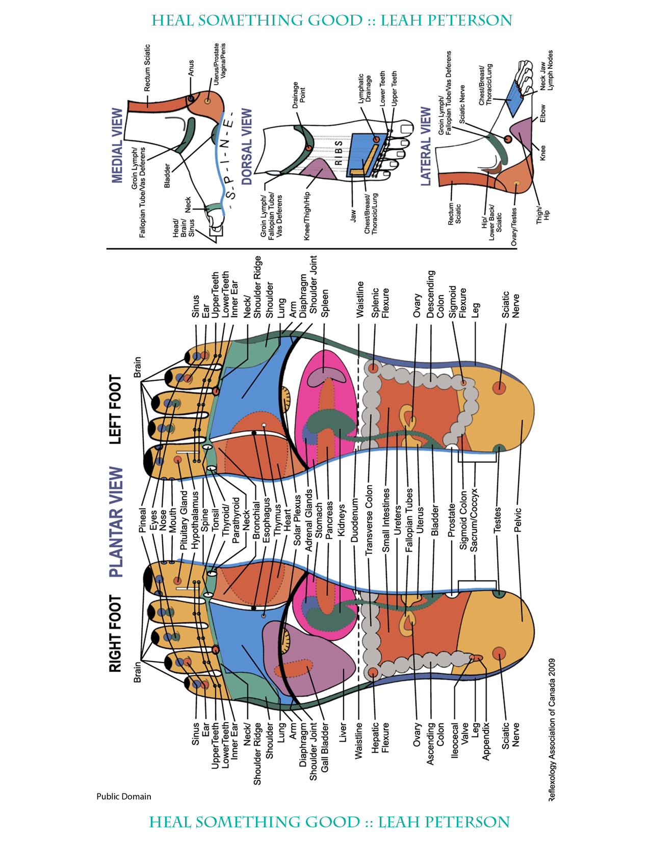 Reflexive Foot